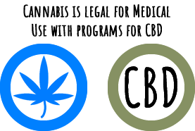Medically Legal