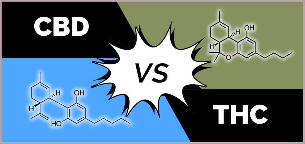 CBD vs. THC: What's the Difference?