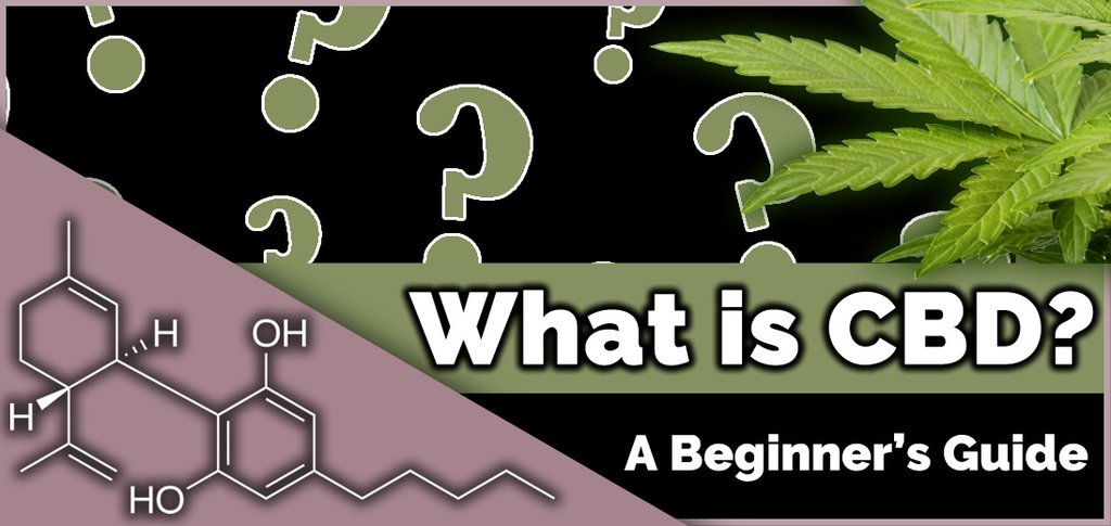 What is CBD? A Guide for Beginners